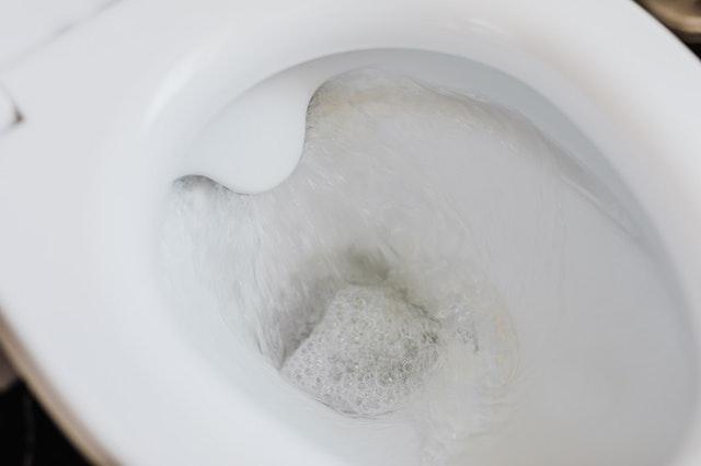 toilette bouchee